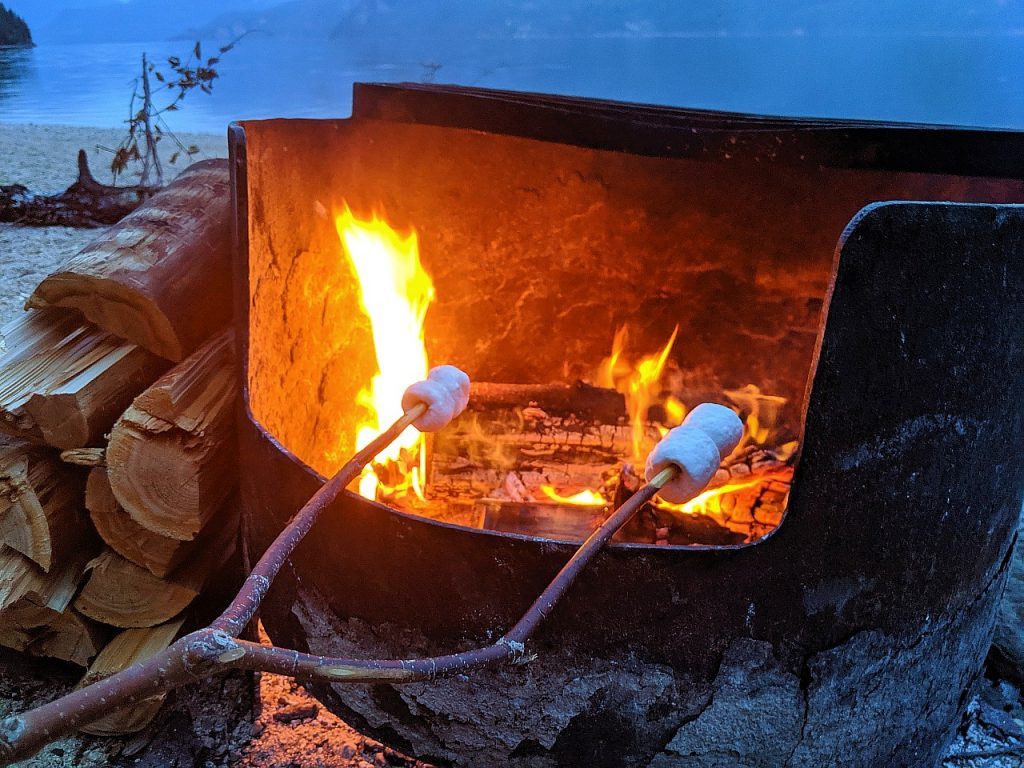 Stick with two marshmallows on it cooking over an fire in a firepit